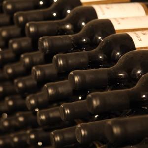 katarzyna-wines